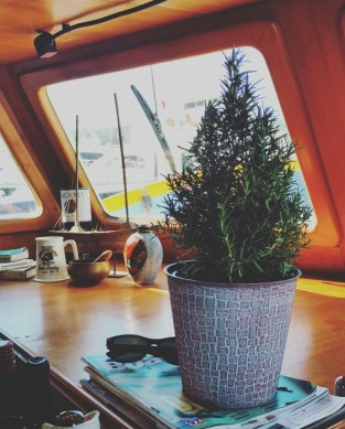theboatlifediareschristmastree